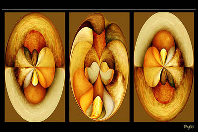 Digital Art - Sanded Woods Triptych Dark by Paula Ayers