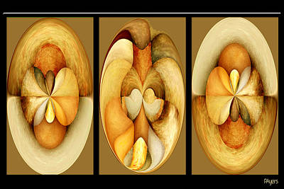 Digital Art - Sanded Woods Triptych Light by Paula Ayers