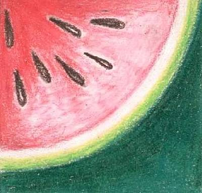 Watermelon Drawing - Sandia by Judith Correa