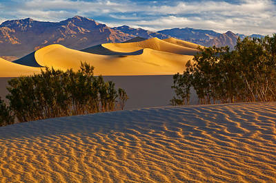 Amargosa Photograph - Sands Of Time by Guy Schmickle