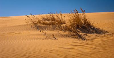Photograph - Sands Of Time by Joye Ardyn Durham