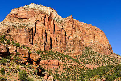 Photograph - Sandstone Giant by Greg Norrell