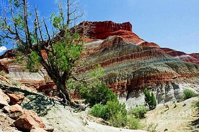 Photograph - Sandstone Kaleidoscope by Frank Townsley