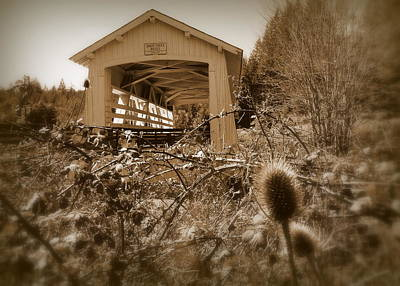 Photograph - Sandy Creek Covered Bridge Remote Oregon by Cindy Wright