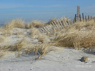 Sandy Neck Beach Art Print by John Doble