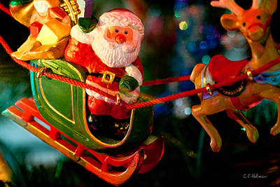 Photograph - Santa And Sleigh by Christopher Holmes