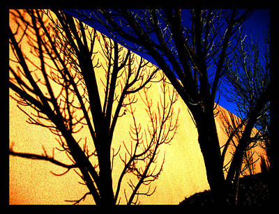 Art Print featuring the photograph Santa Fe Afternoon by Susanne Still