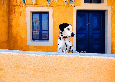 Photograph - Santorini Spot by John Galbo