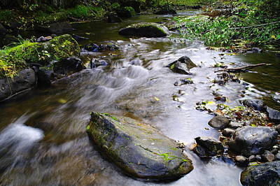 Satus Creek In Autumn Art Print by Jeff Swan