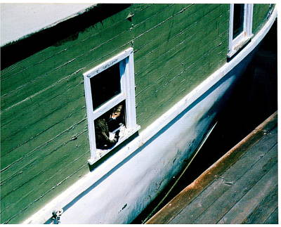 Sausalito Photograph - Sausalito Boat Cat by Don Struke