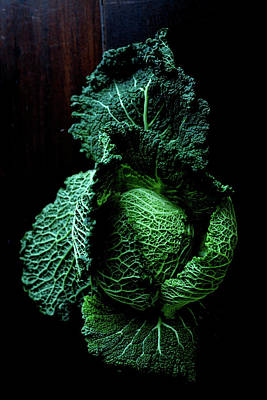 Healthy Eating Photograph - Savoy Cabbage by Ingwervanille