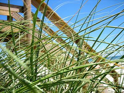 Sawgrass Original