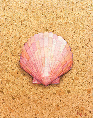 Limited Edition Painting - Scallop Shell by Katherine Young-Beck