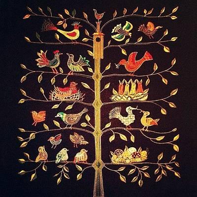 Animals Wall Art - Photograph - Scandinavian Tree Of Birds by Natasha Marco