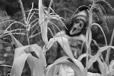 Farms Photograph - Scarecrow In The Corn Black And White by James BO  Insogna