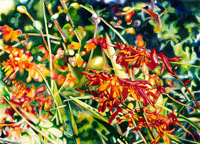 Crocosmia Painting - Scarlet Crocosmia by Maureen Dean