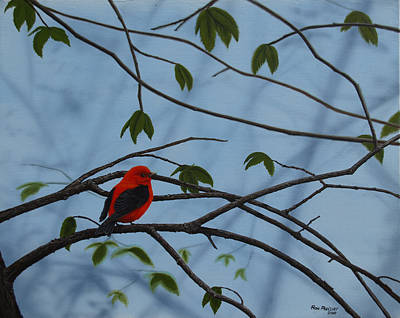 Birds Painting - Scarlet Tanager by Ron Plaizier