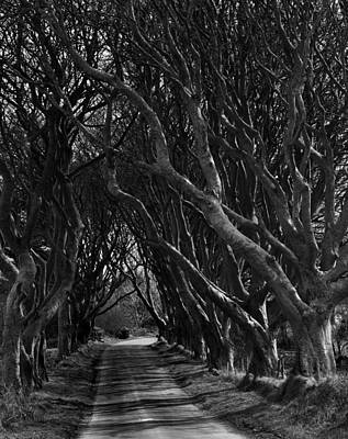 Armoy Photograph - Scary Pathway by David McFarland