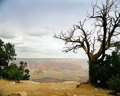 Photograph - Scenic Grand Canyon 18 by M K Miller