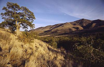 Scenic View Of The Yakima Valley Art Print by Sisse Brimberg