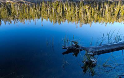 Schaup Lake Reflections Art Print