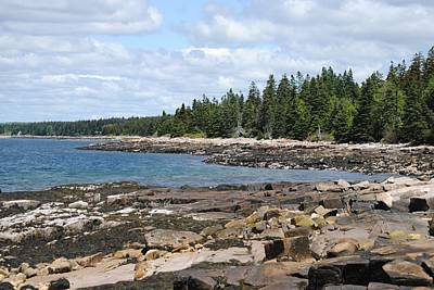 Schoodic Peninsula  Art Print by Steven Scott
