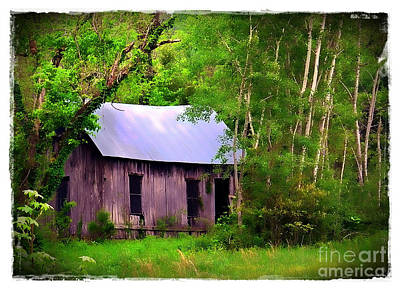 Photograph - Schoolhouse In Lost Valley by Judi Bagwell