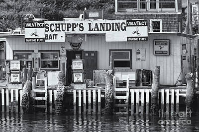 Photograph - Schupp's Landing II by Clarence Holmes