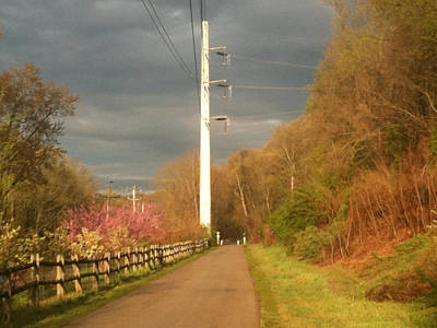 Photograph - Schuykill Trail by Emery Graham