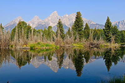 Photograph - Schwabacher Morning Reflections by Greg Norrell
