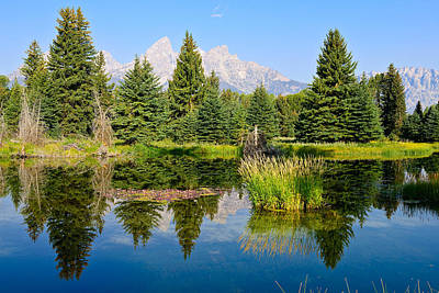 Photograph - Schwabacher Reflections by Greg Norrell