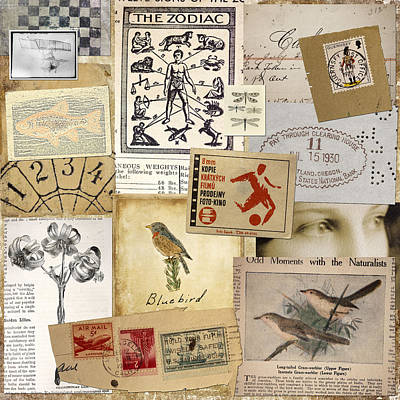Scrap Photograph - Scrapbook Page Number 1 by Carol Leigh