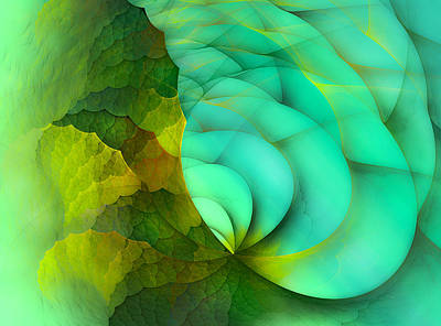 Fractal Geometry Digital Art - Sea Dragon by Betsy Knapp