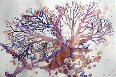 Sea Fan Original