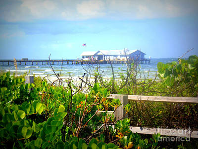 Photograph - Sea Grapes Anna Maria Island Pier by Lou Ann Bagnall