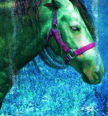 Photograph - Sea Horse by George Pedro