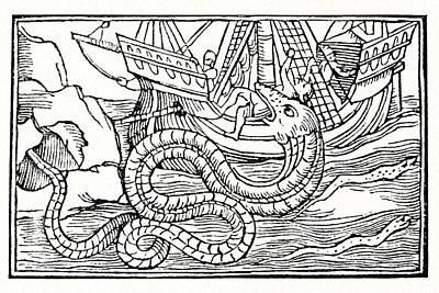 Sea Serpent, 16th Century Artwork Art Print