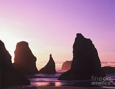 Photograph - Sea Stacks by Dennis Flaherty and Photo Researchers
