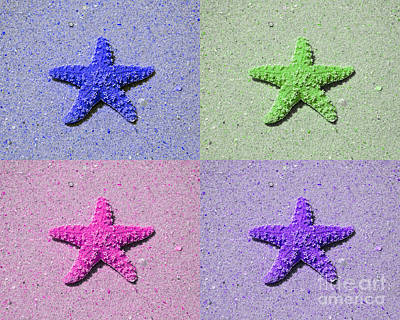 Purple Sea Stars Wall Art - Photograph - Sea Star Serigraph - 4 Stars by Al Powell Photography USA