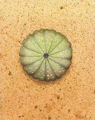 Sea Urchin Original by Katherine Young-Beck