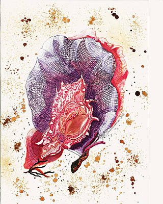 Seafans And Shell Art Print