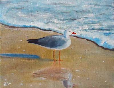 Seagull By The Shore Art Print