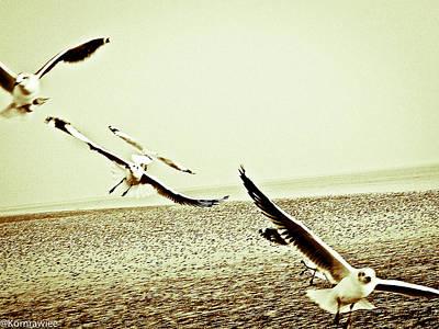 Seagulls Beneath The Wings Art Print by Kornrawiee Miu Miu