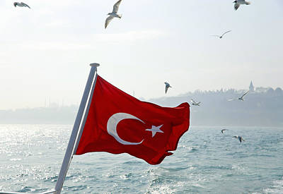 Y120831 Photograph - Seagulls Flying Over Turkey Flag by Henglein and Steets