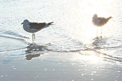 Seagulls In A Shimmer Art Print by Olivia Novak