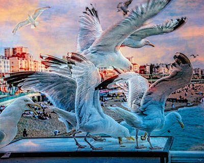 Photograph - Seagulls On Brighton Pier by Chris Lord