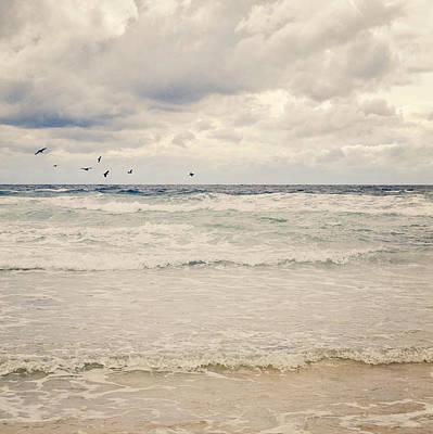 Flock Of Bird Photograph - Seagulls Take Flight Over Sea by Photo - Lyn Randle