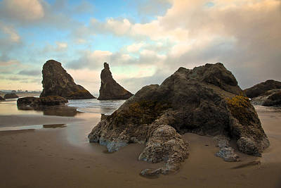 Photograph - Seal Rock Oregon by Steve McKinzie