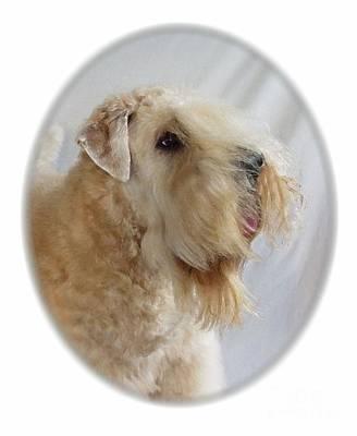 Sealyham Terrier 645 Print by Larry Matthews