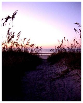 Photograph - Seaoats Sand And Surf by Frank Wickham